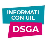 Concorso pubblico DSGA
